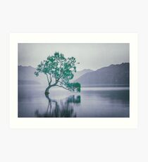 """The Tree In The Lake"" by Cat Burton Art Print"
