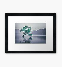 """The Tree In The Lake"" by Cat Burton Framed Print"