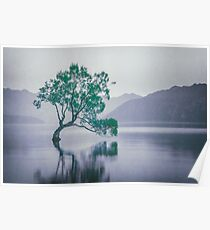 """""""The Tree In The Lake"""" by Cat Burton Poster"""