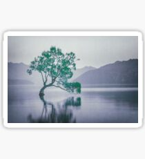 """""""The Tree In The Lake"""" by Cat Burton Sticker"""