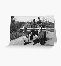 transporting firewood, male version Greeting Card