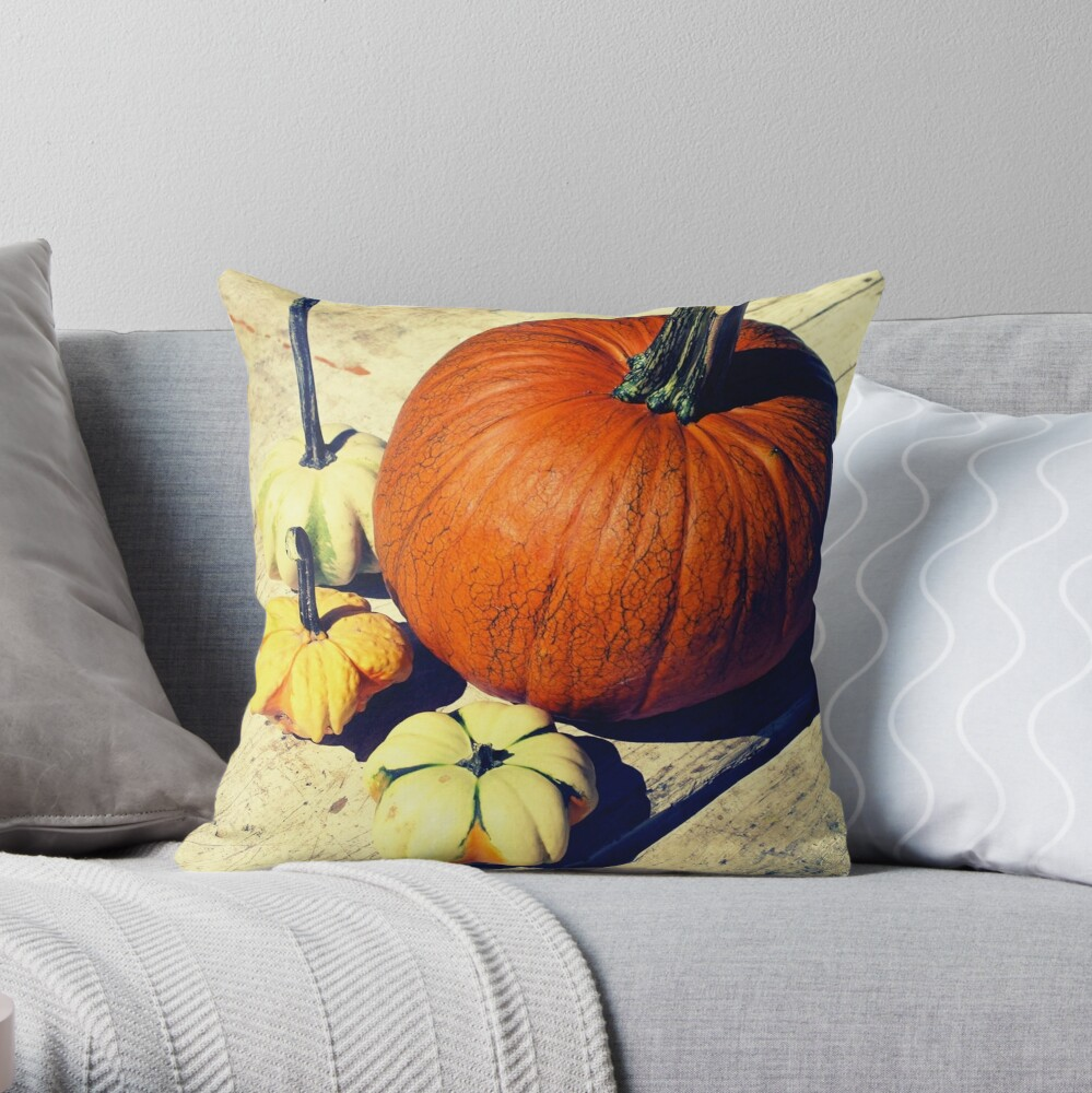 Gift for Food Blogger - Pumpkin and Squash Art - Kitchen and Dining Decor Throw Pillow