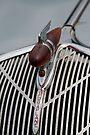 1936 Hudson Terraplane symbol & grill by David Carton