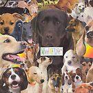 Woof! by Andrew  Donegan aka Piebald77