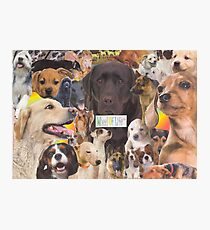 Woof! Photographic Print