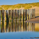 Reflections on the beach 3 by Adri  Padmos