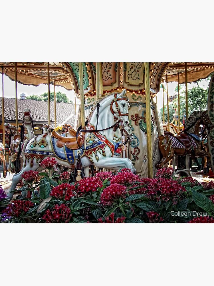 Carousel Horses by colgdrew