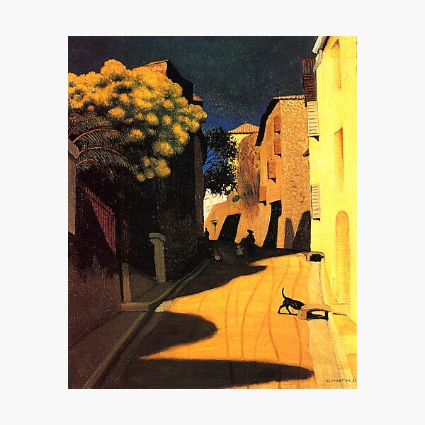 Félix Vallotton - Mimosa with Flowers at Cagnes Photographic Print