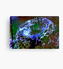 water sculpture  Canvas Print