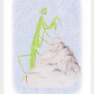 The Hermit by Linda Ursin