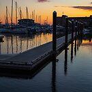 Newports Dusk by Karol Livote