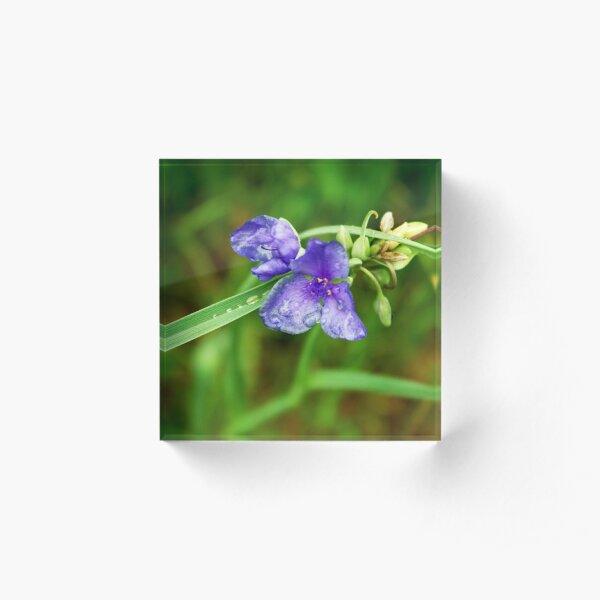 Purple Flower Acrylic Block