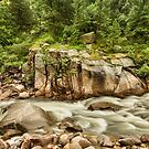 Colorado St Vrain Canyon and Rocky Mountain Stream by Bo Insogna