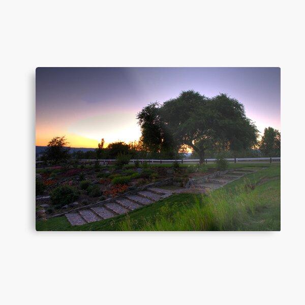 Connaught Sunset Metal Print