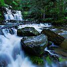 Flowy Liffee Falls by Robert Mullner