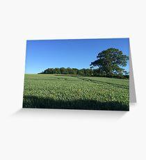 Field near Coleshill, Berkshire Greeting Card
