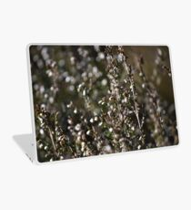 Winter-bleached Heather Laptop Skin