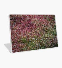 Sphagnum Laptop Skin