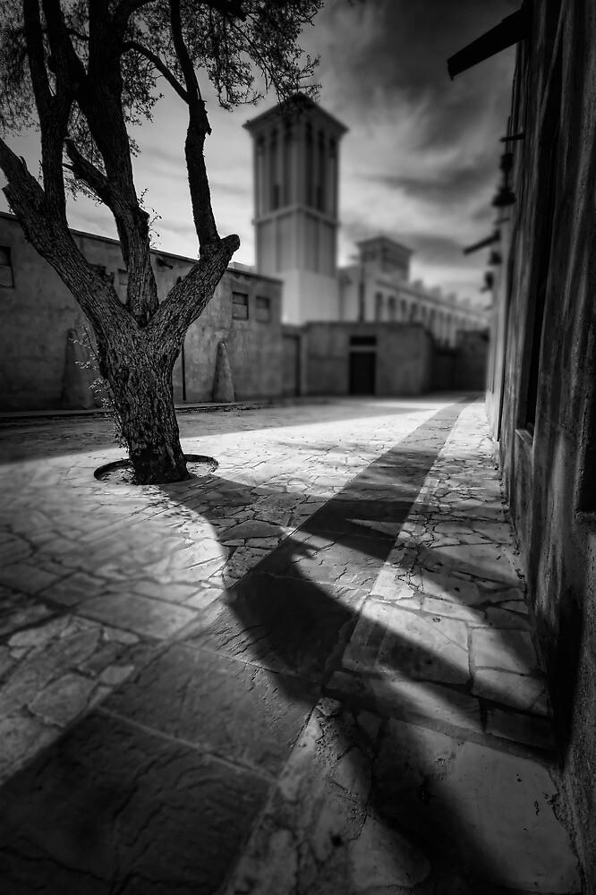 A Tree Grows in Bastakiya by springwatcher