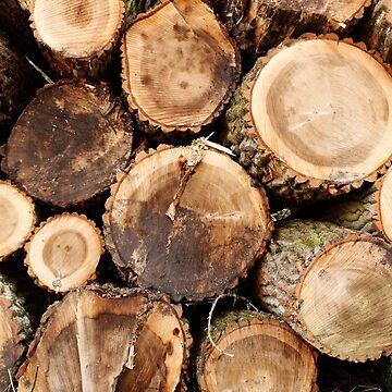 Cortar troncos de madera de DanaAndTheBooks