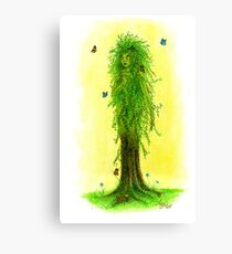 Willow Dryad Canvas Print