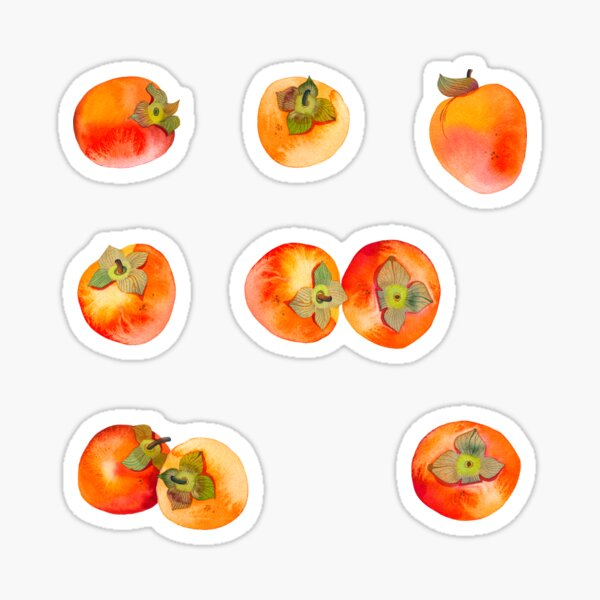 Persimmons Stickers Sticker