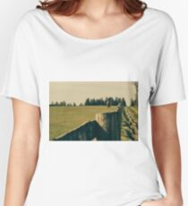 Horse In A Pasture Women's Relaxed Fit T-Shirt
