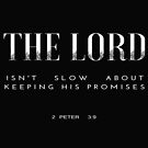 The Lord Is Not Slow About Keeping His Promises  by RollingStore .