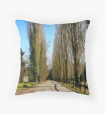 Donnington Castle Approach Throw Pillow