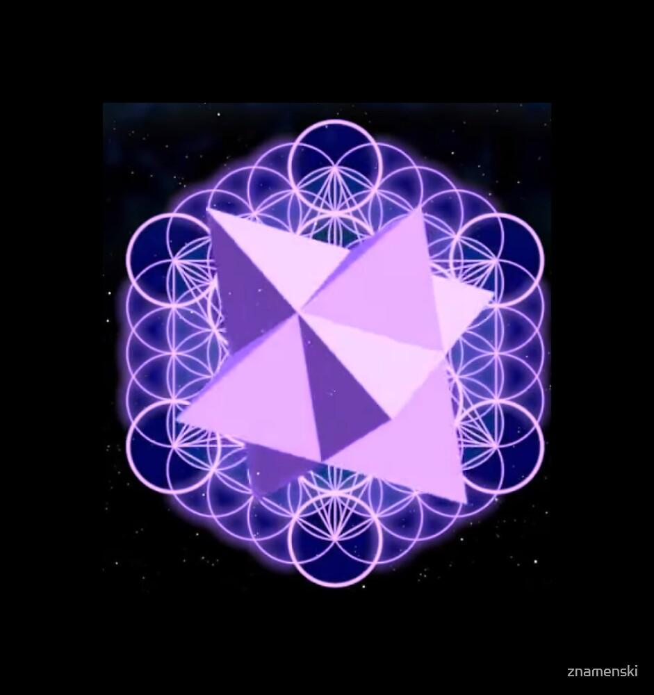 Flower of Life Human - symbol, illustration, design, crystal, jewelry, internet, shape, vector, sign, flag, vertical, sphere, 360-degree view, wide, gemstone, circle, shiny, precious gem, the media by znamenski