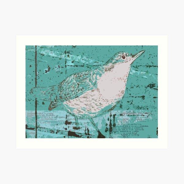 Dipper Bird Teal Art Print