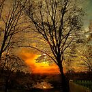 Sunset over Larz Anderson Park by LudaNayvelt