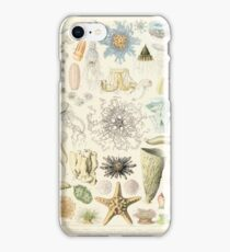 Adolphe Millot ocenaographie iPhone 8 Case