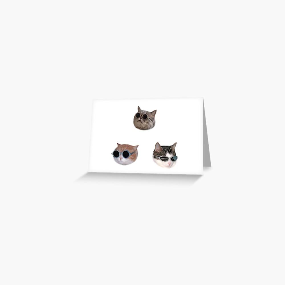 Cool Kitties Sticker-pack Greeting Card