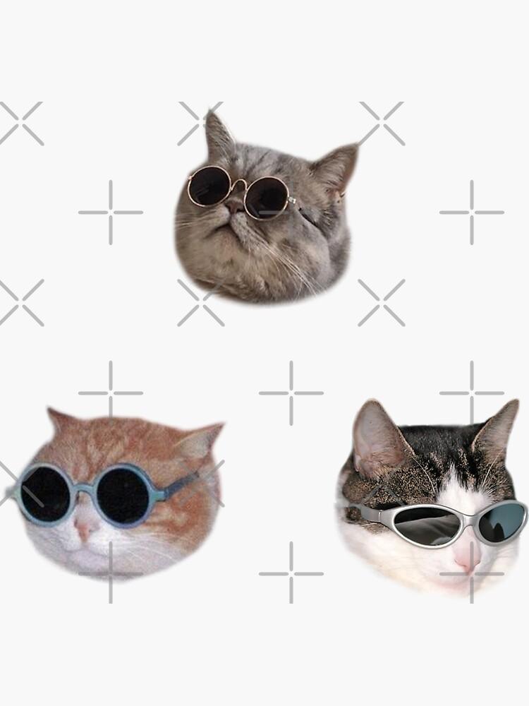 Cooles Kätzchen Sticker-Pack von Elisecv