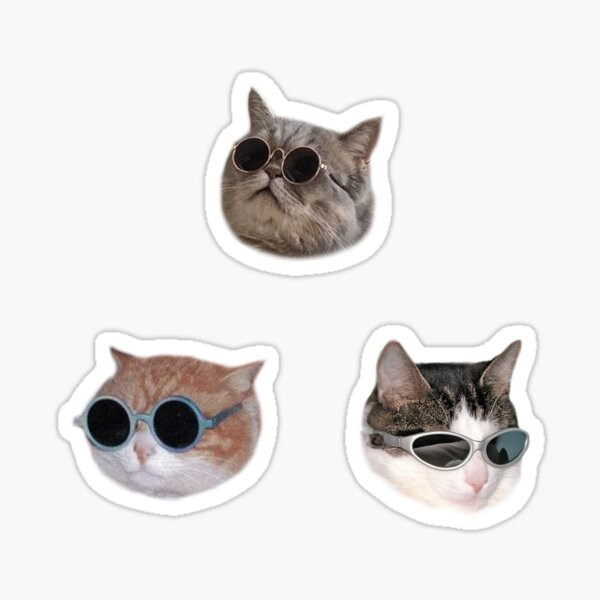 Coole Kätzchen Sticker-Pack Sticker