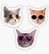 Pegatina Paquete de pegatinas Cool Kitties # 1