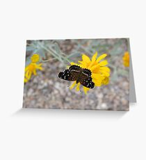 Tiny Black Butterfly Greeting Card