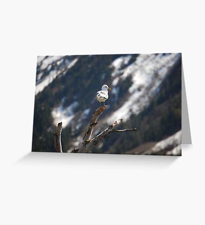 Bird on a stick  Greeting Card