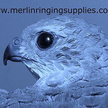 Merlin P3 by Merlin13