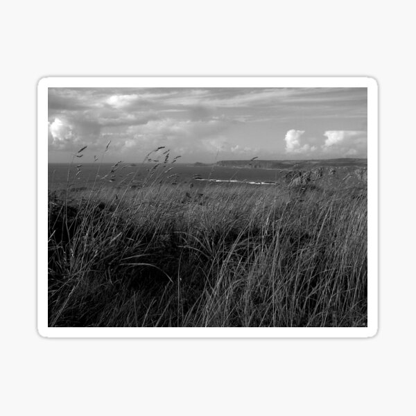 Lands End towards Whitesand Bay Sticker