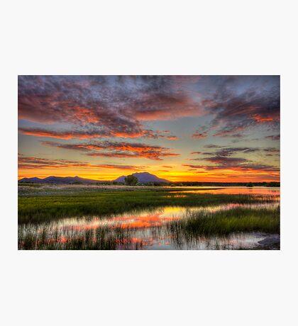 Yada, Yada, Sunset Photographic Print