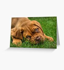 Tired Greeting Card