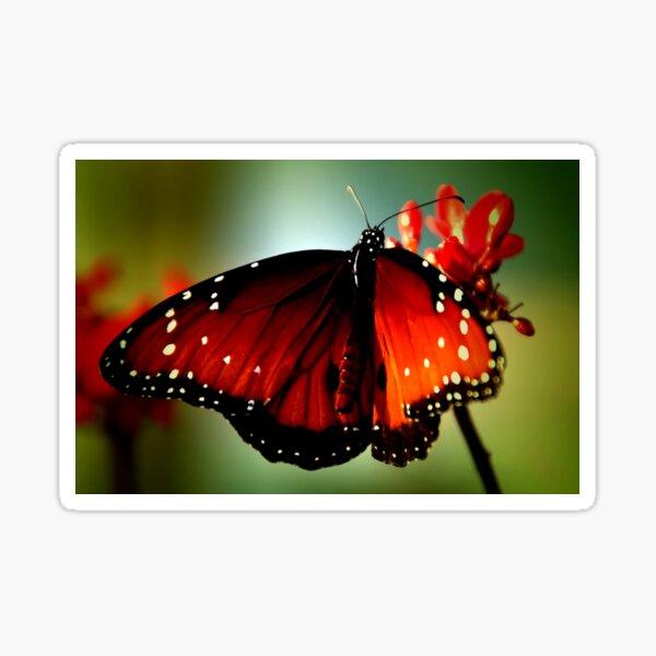 ~Just like a butterfly... Sticker