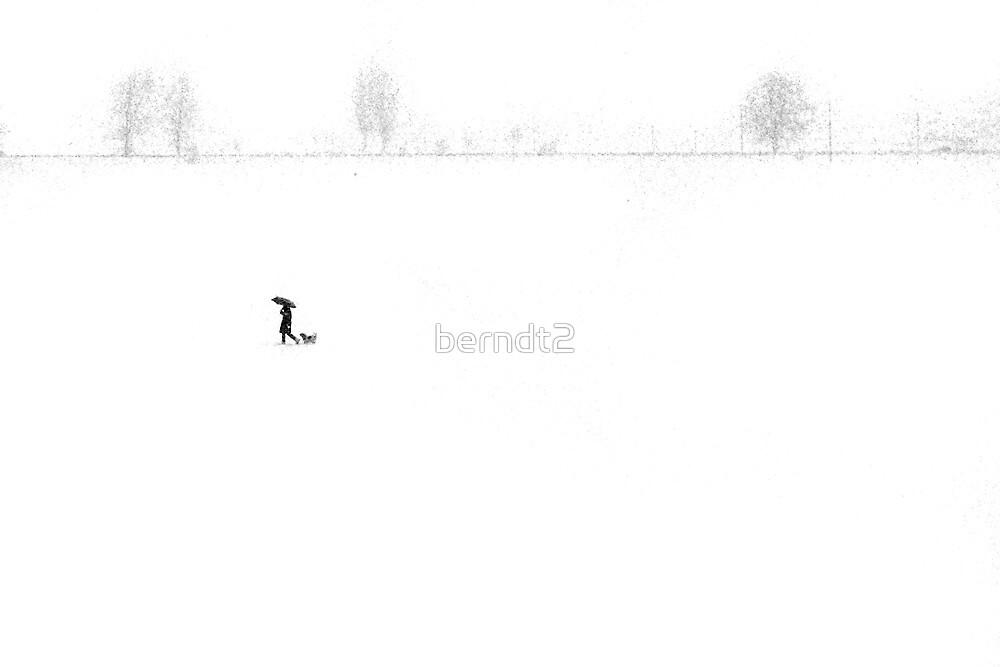 Out Walkin' by berndt2