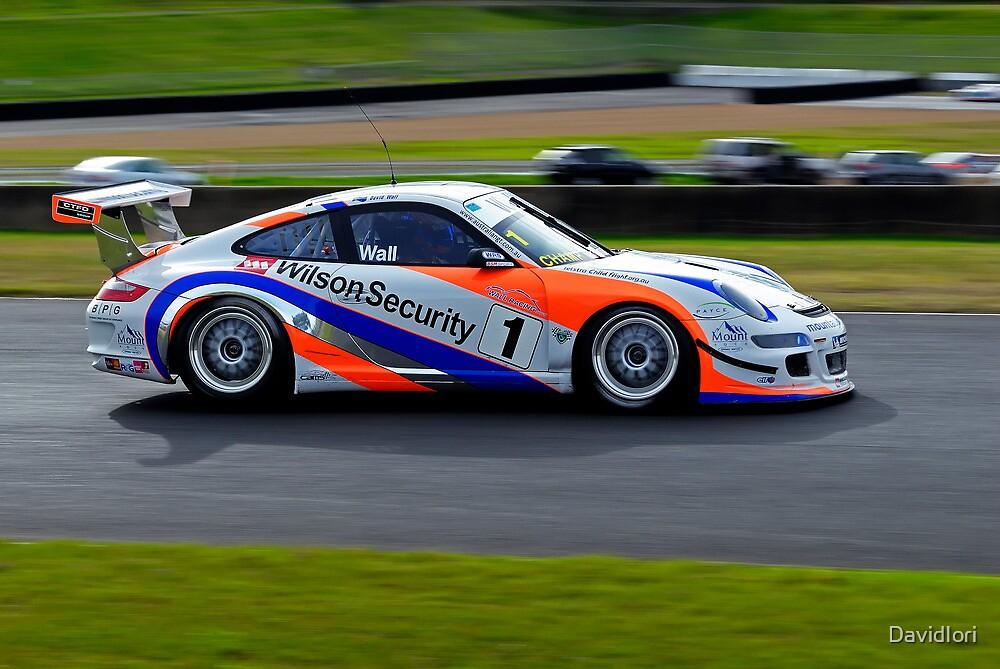 Australian GT Championship   EASTERN CREEK RACEWAY   Sports Car Carnival 2010   David Wall   Porsche GT3 by DavidIori
