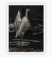 The Crane Ballet #2 Sticker