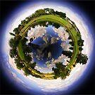 Quart Pot circular Panorama by Kym Howard