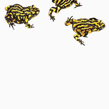 Corroboree frogs without lines by LauraGrogan