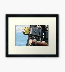 CAT HEAD Framed Print